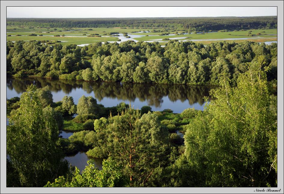 Река Десна