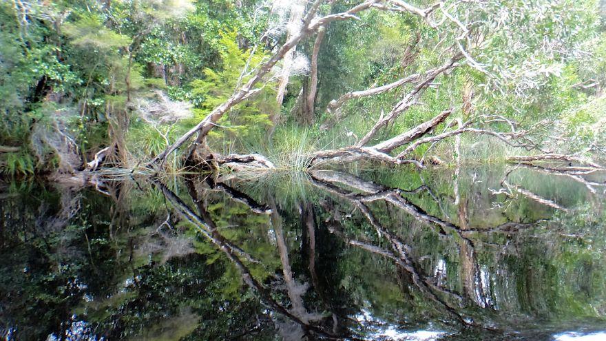 Невероятные фотографии природы, сделанные без использования Photoshop 0 1432df 740d534e orig