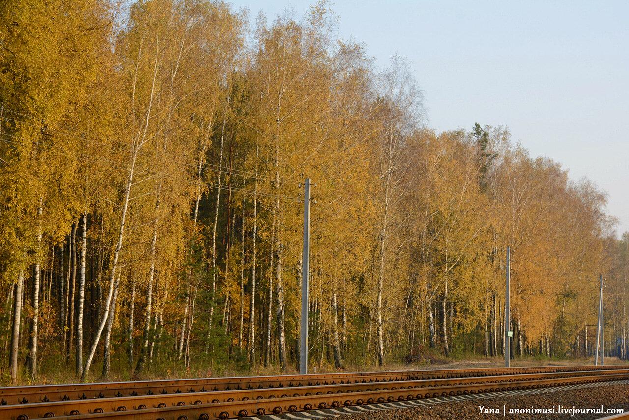 Цвети, Беларусь! Деревенская осень