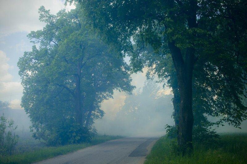 v1528112 Много дыма.jpg