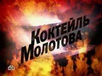Книга Коктейль Молотова (2009) SATRip avi(xvid) 478Мб