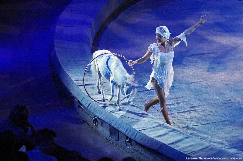 Зима. Большой Московский цирк. 22.12.15.36..jpg
