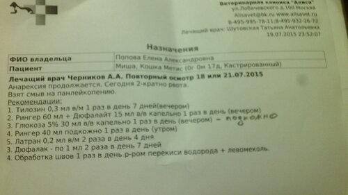 https://img-fotki.yandex.ru/get/3409/50951434.1a/0_1327fa_b931c305_L.jpg