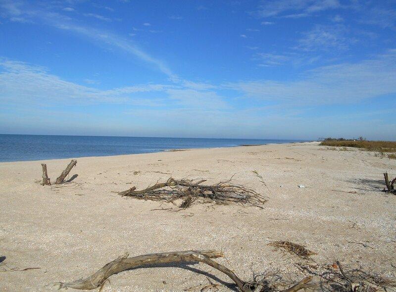 На берегу пустынном, октябрь ... DSCN1720.JPG