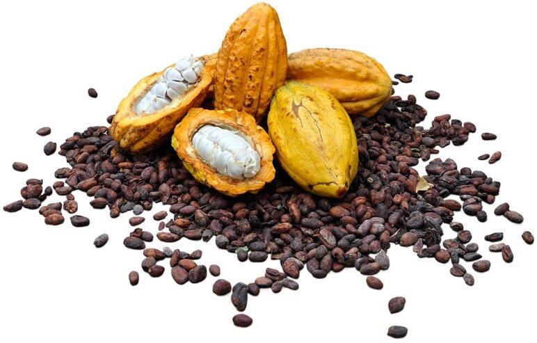 Самый дорогой темный шоколад