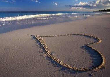 На земле живёт любовь