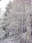 1 Мая в Екатеринбурге утром дождь, а днём выпал снег!