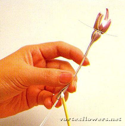 маленькие бутоны для розы