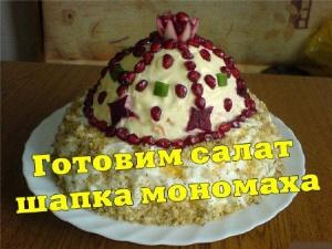 Книга Готовим салат шапка мономаха (2013) DVDRip