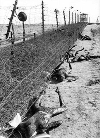 ¿Que es el Genocidio del Pueblo Soviético? - Página 6 0_269ba_1935dbd_L