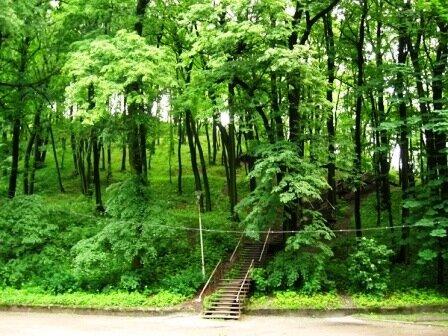 Высокий замок — парк. Лестница, ведущая с первой террасы на вторую