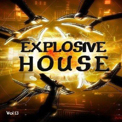 Explosive House Vol.13 (2009)