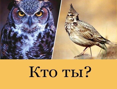 КТО ТЫ ?