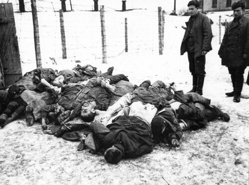 ¿Que es el Genocidio del Pueblo Soviético? - Página 6 0_2670b_c18f5172_L