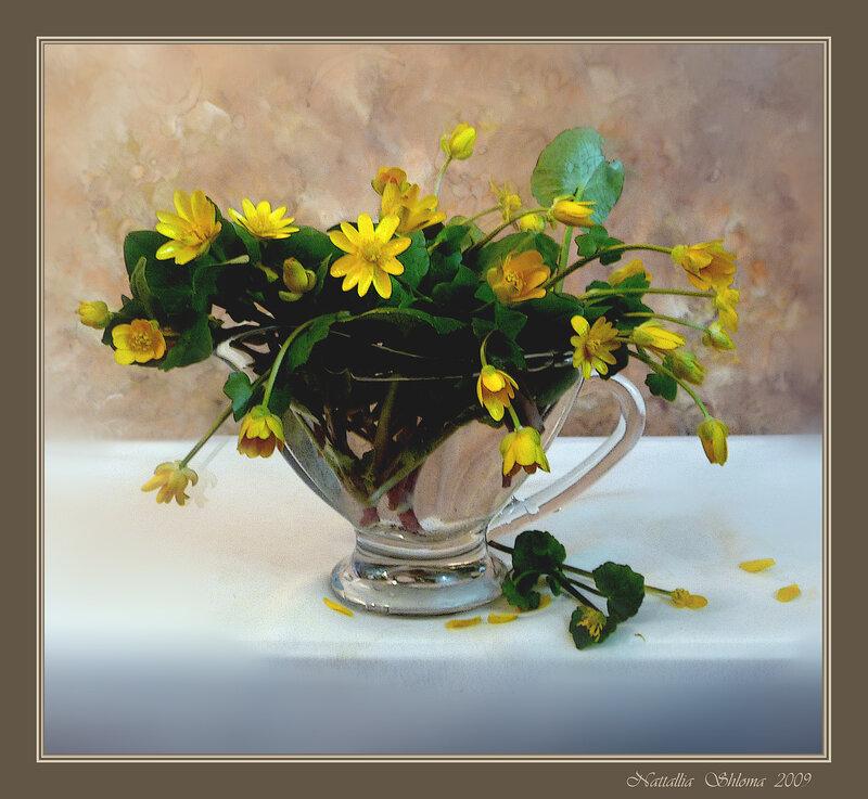 Цветы из весенней рощи