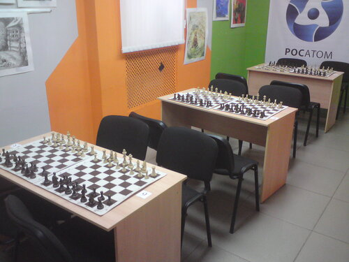 шахматы школа