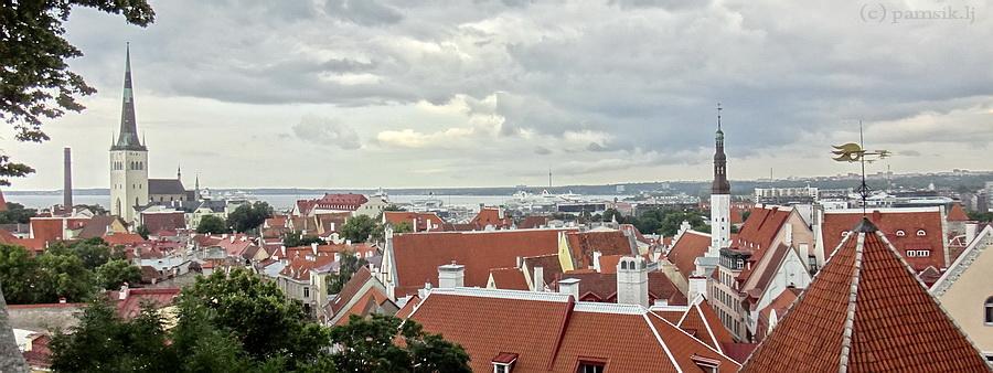 панорама5.jpg