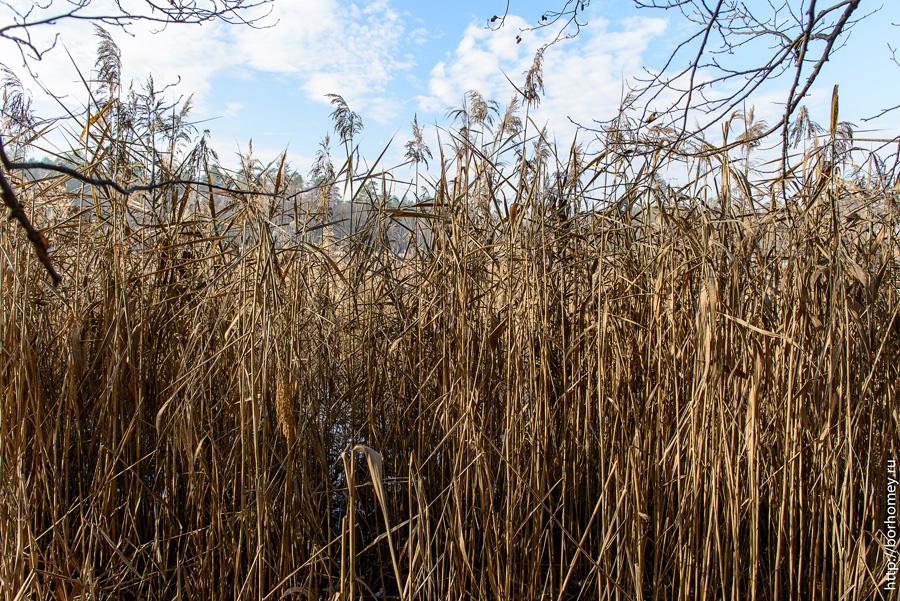 варламовское озеро