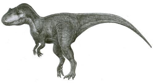 Аллозавр, для сравнения