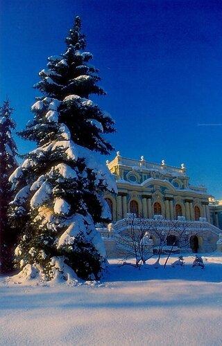 Зима в Городскои саду