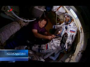 На Международной космической станции появились мухи