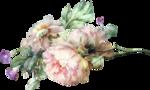 priss_spring_el81.png