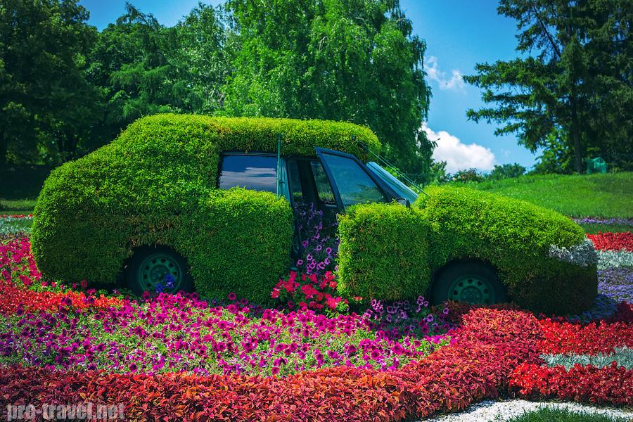 Выставка зеленых авто на Певческом поле
