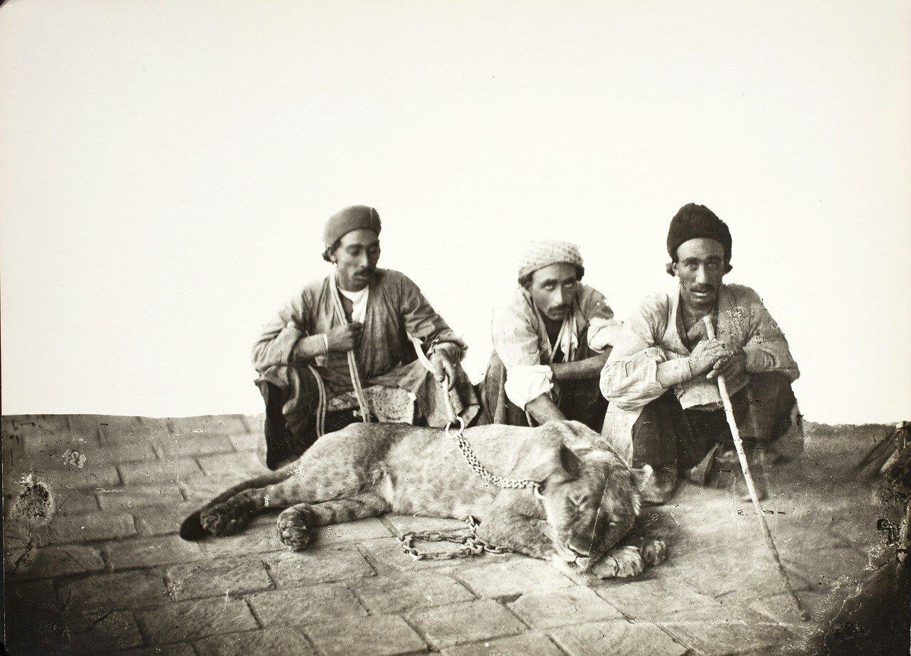 Мужчины с львицей