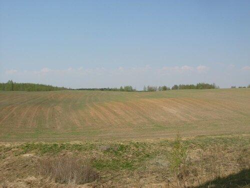 Белоруссия весной. Фотографии