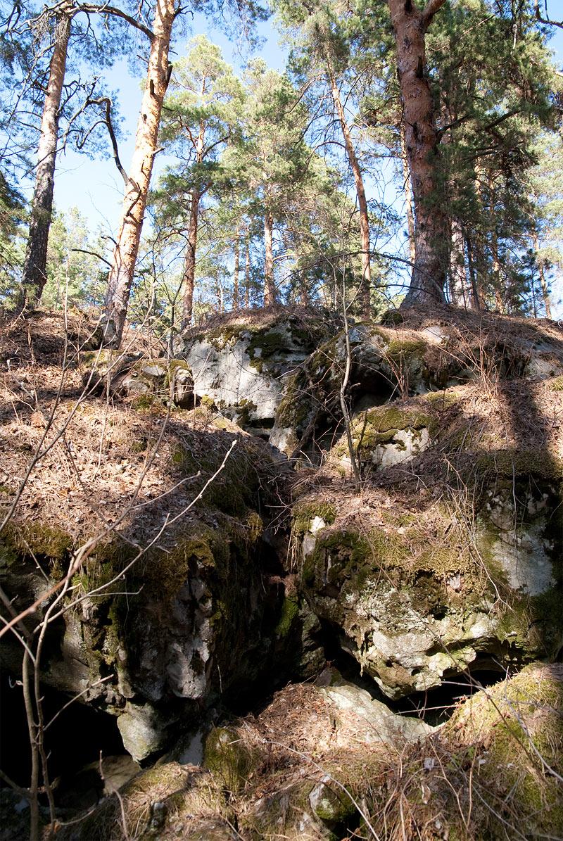 Лабиринт - каменный лес - красивый лес на скалах возле Старой Рачейки