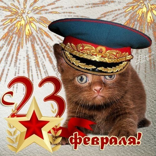 Поздравления с днём защитника отечества 23 февраля - Живые открытки для любого праздника в 2020 году