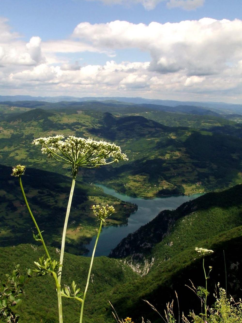 Каньону реки Тара равных вЕвропе нет. Протяженность ущелья сглубиной до1300 метров составляет 80