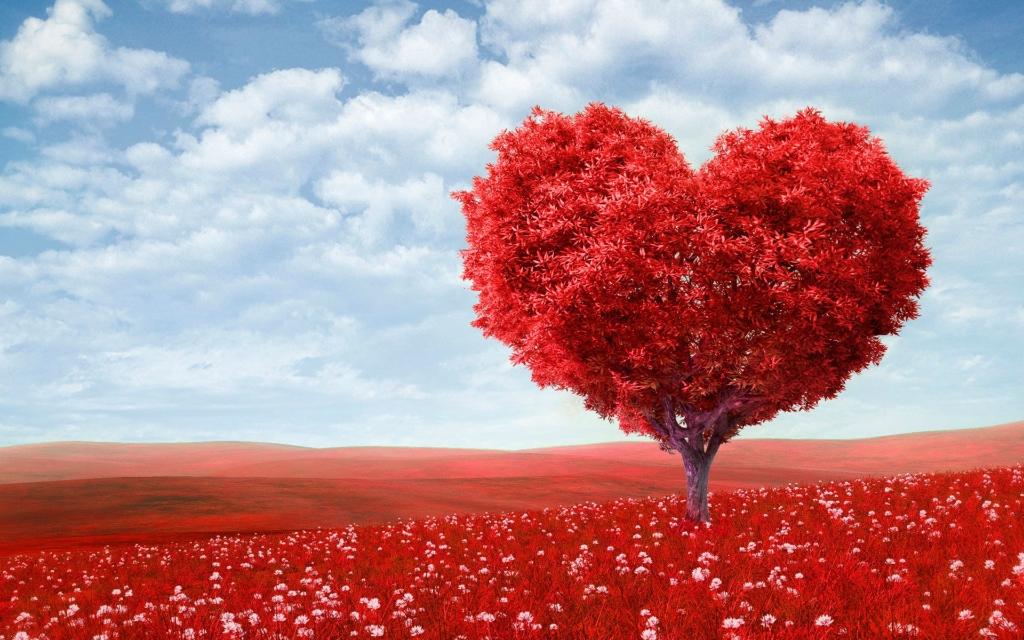 день святого валентина,император,любовь,влюбленность,открытки,сердце,шарики,плюшевые мишки