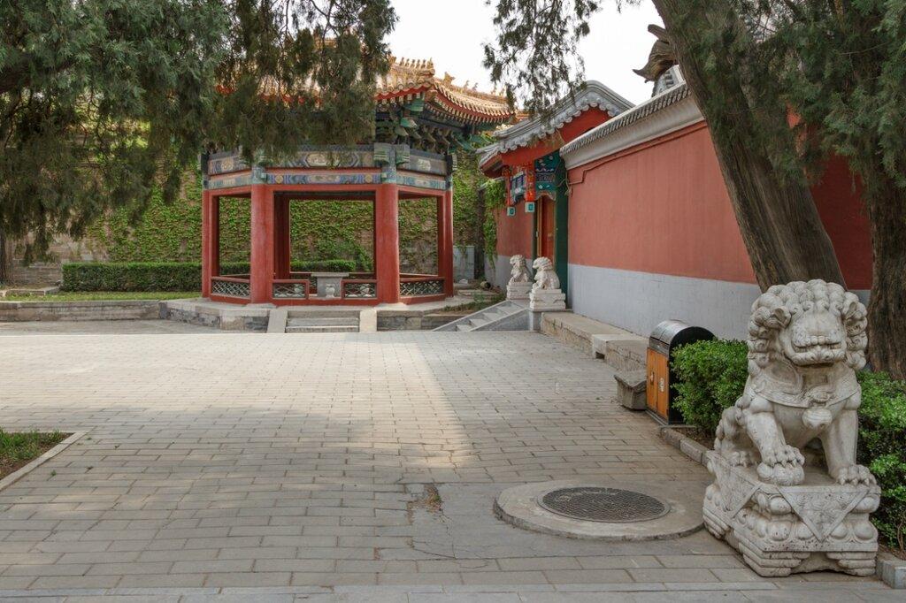 Садик, Пекинский дворец культуры трудящихся