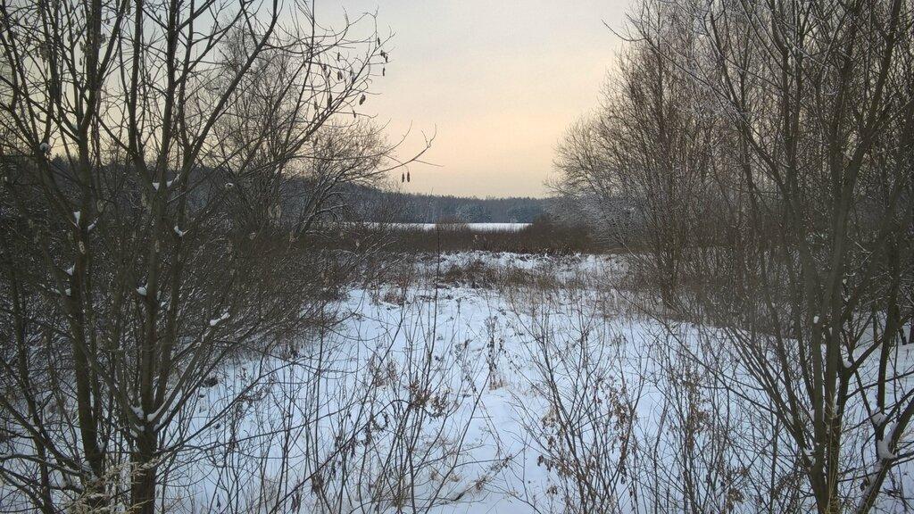 Декабрьский пейзаж