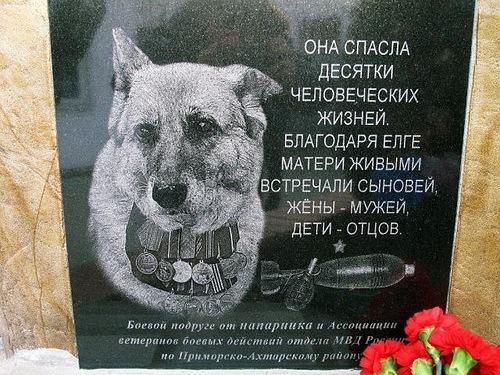 https://img-fotki.yandex.ru/get/3416/104793308.774/0_cdc59_c097bc3a_orig