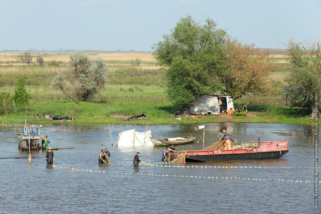 дельта Волги рыбаки Бахтемир