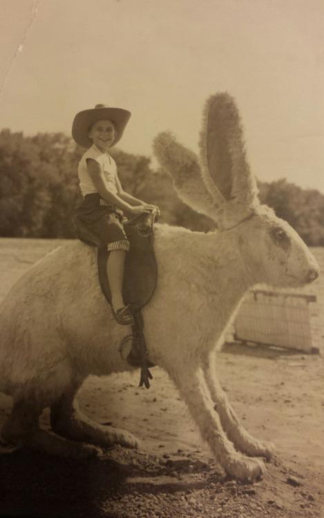 A little boy riding an odd giant rabbit, 1956.jpg