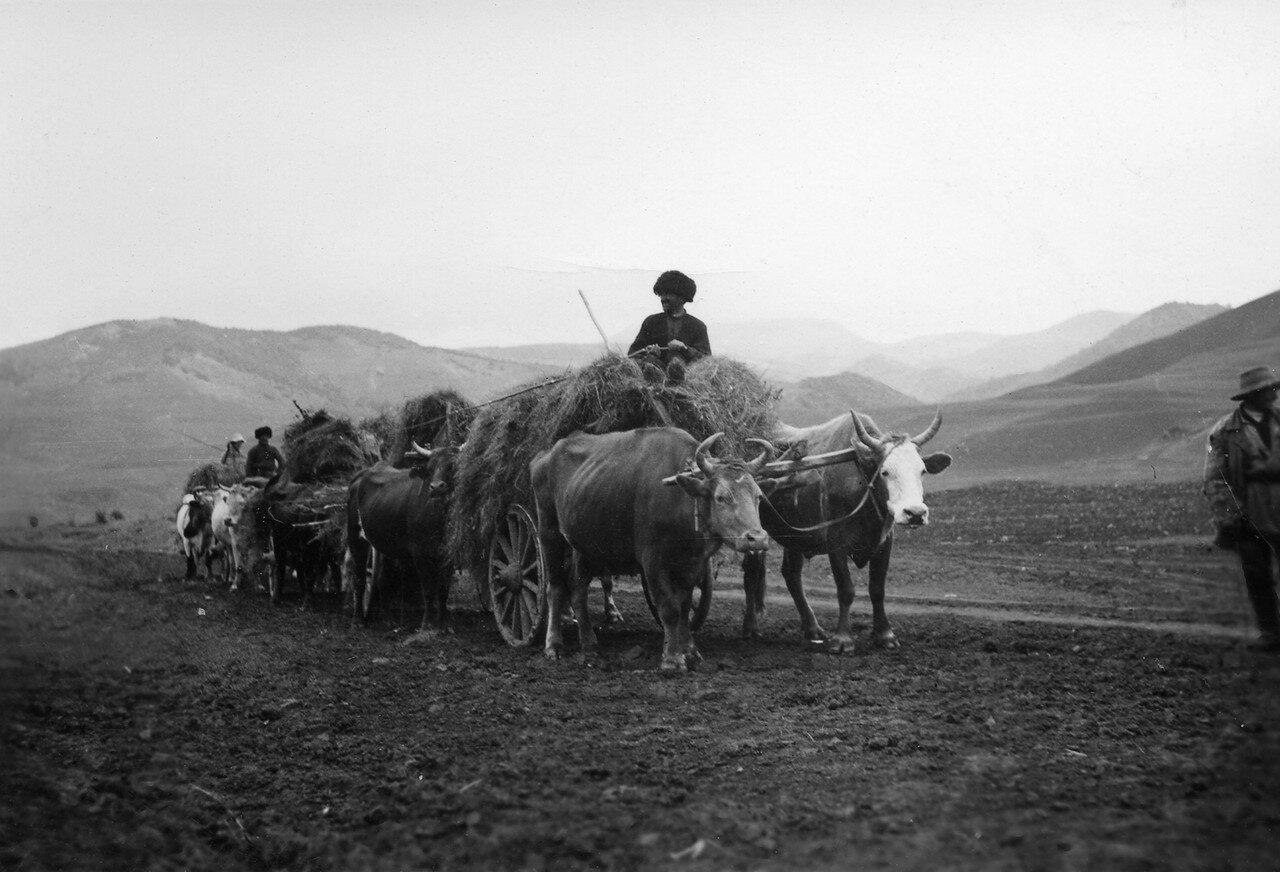 70. Кавказ