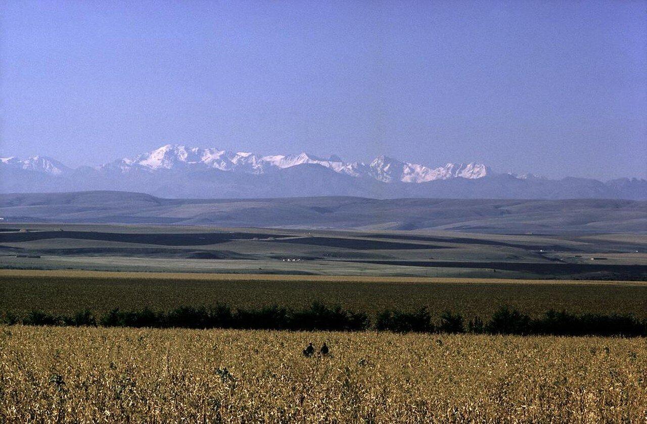 Кавказ. Любители верховой езды в степной местности вдоль подножья Кавказских гор