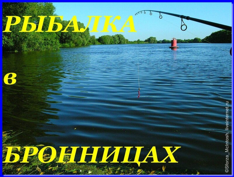 рыбалка в районе бронниц