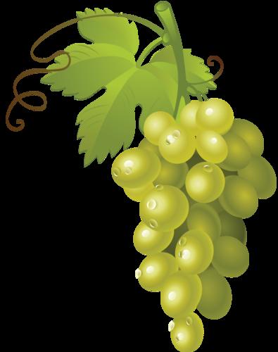 виноград (44).png