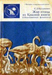 Жар-птица из Красной книги. Обыкновенный фламинго