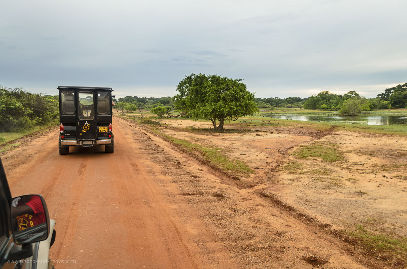 4. Во время фотосафари в заповеднике Яла на Шри-Ланке туристам категорически запрещено выходить из джипа. (320, 18, 7.1, 1/30)
