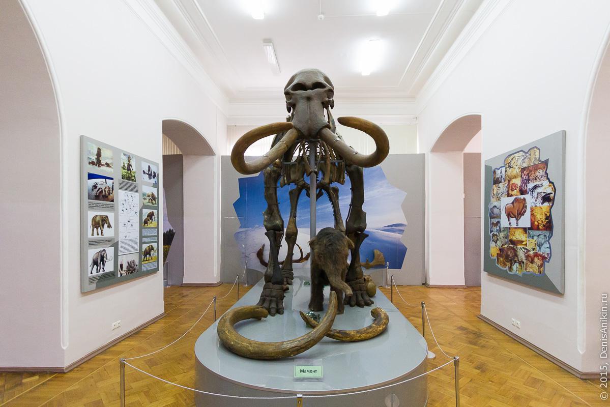 Астраханский краеведческий музей 8