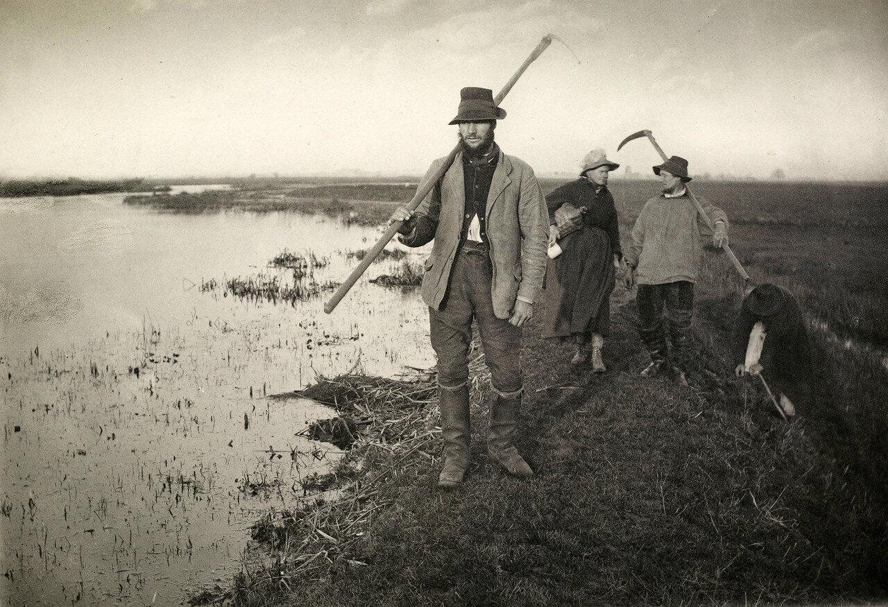 12. Возвращение с болот