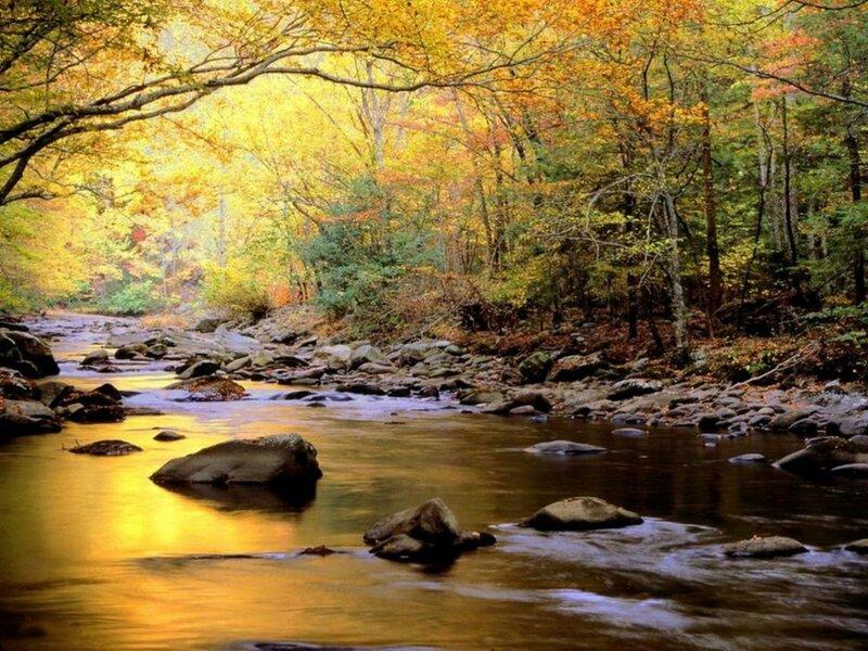 """Предпросмотр схемы вышивки  """"золотая пора """". золотая пора, осень, ручей, предпросмотр."""