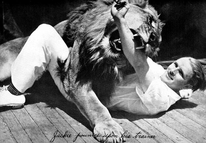 MGM-Lion-11.jpg