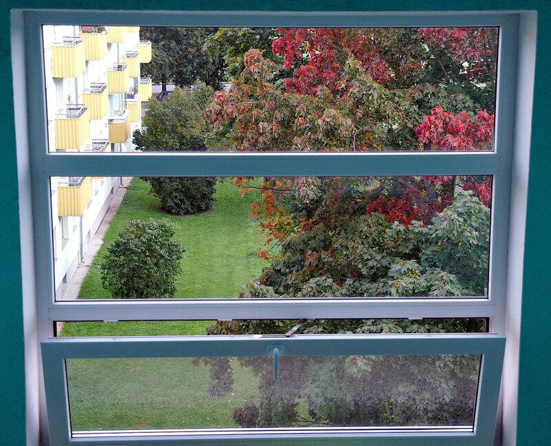 Осень за окном.