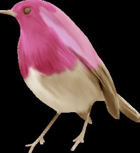 птички розовые
